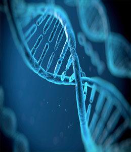 Генетичний матеріал